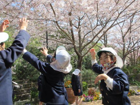 3月31日 「元気の家」でお花見をしました♪(5歳児)